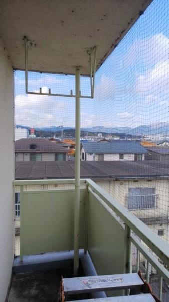 集合住宅のハト対策 滋賀県大津市 イメージ
