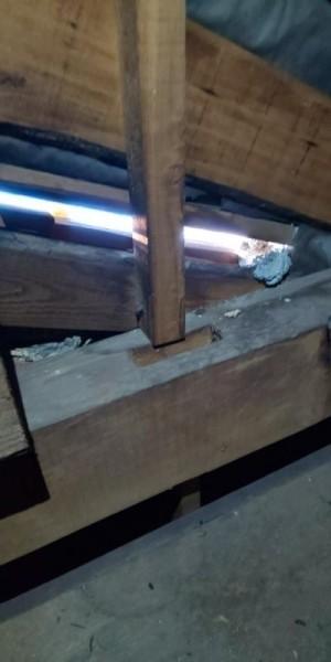 戸建て住宅の防鼠作業|京都市上京区 イメージ
