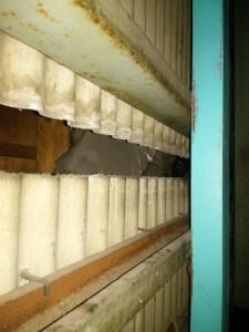 倉庫の防鼠工事 東大阪市 イメージ