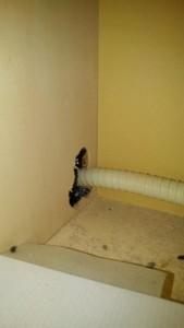 宿泊施設のネズミ被害|京都市東山区 イメージ