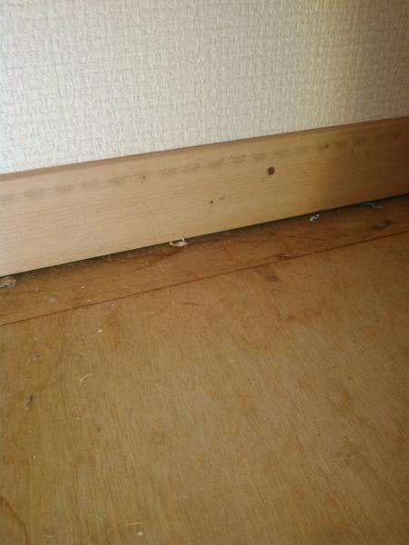 共同住宅のムカデ駆除|京都市右京区 イメージ