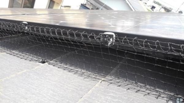 太陽光パネルの防鳥工事|滋賀県草津市スライダー2