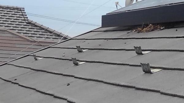 太陽光パネルの防鳥工事|滋賀県草津市 イメージ