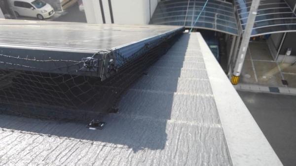 戸建住宅の防鳥工事|京都市伏見区スライダー2
