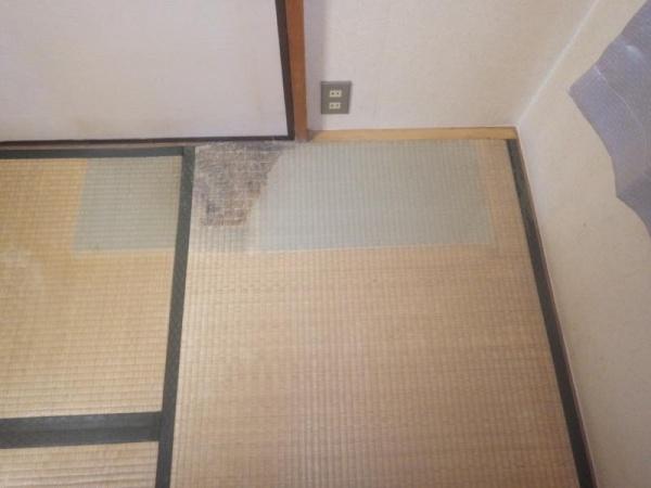 集合住宅の白蟻駆除作業|京都市右京区スライダー1