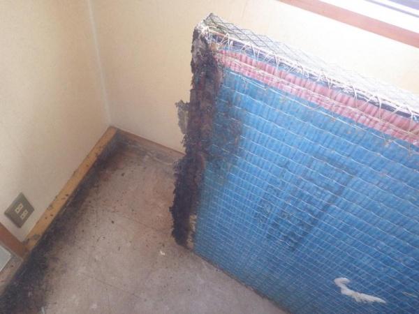 集合住宅の白蟻駆除作業|京都市右京区スライダー2