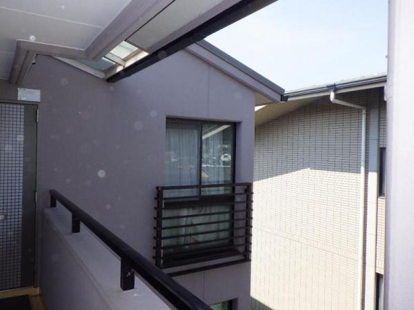 分譲マンションの防鳥工事 京都市左京区 イメージ