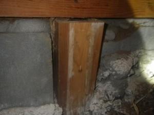 戸建て住宅のシロアリ駆除|京都市右京区 イメージ