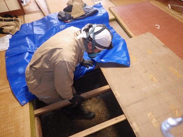 戸建て住宅の白蟻床下無料点検|京都府宇治市 イメージ