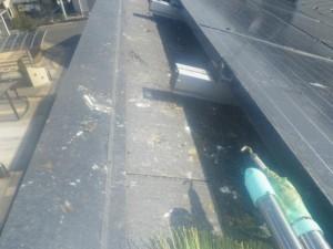 太陽光パネルの防鳥工事 滋賀県野洲市 イメージ