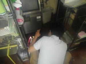 飲食店のゴキブリ駆除 大阪府吹田市スライダー3