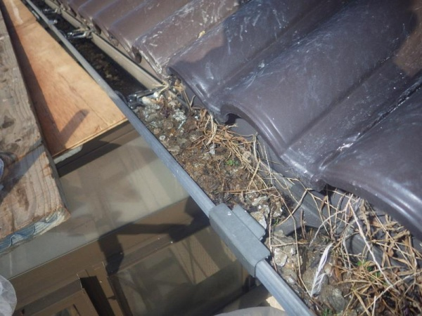 太陽光パネルの防鳥工事|滋賀県大津市 イメージ