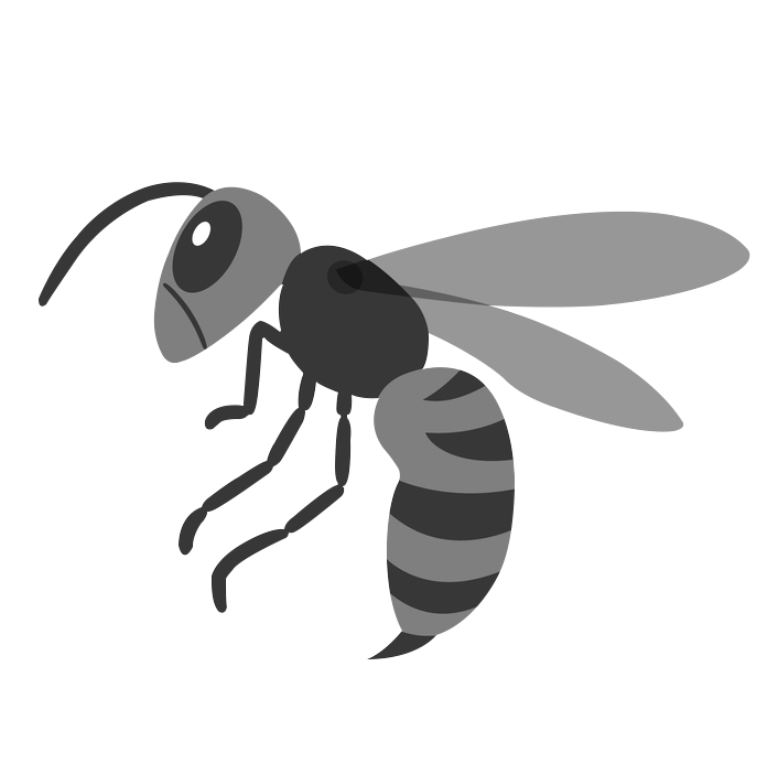 スズメバチ/蜂の巣駆除 イメージイラスト