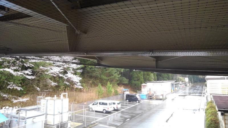 大型倉庫のハト対策|滋賀県栗東市スライダー3