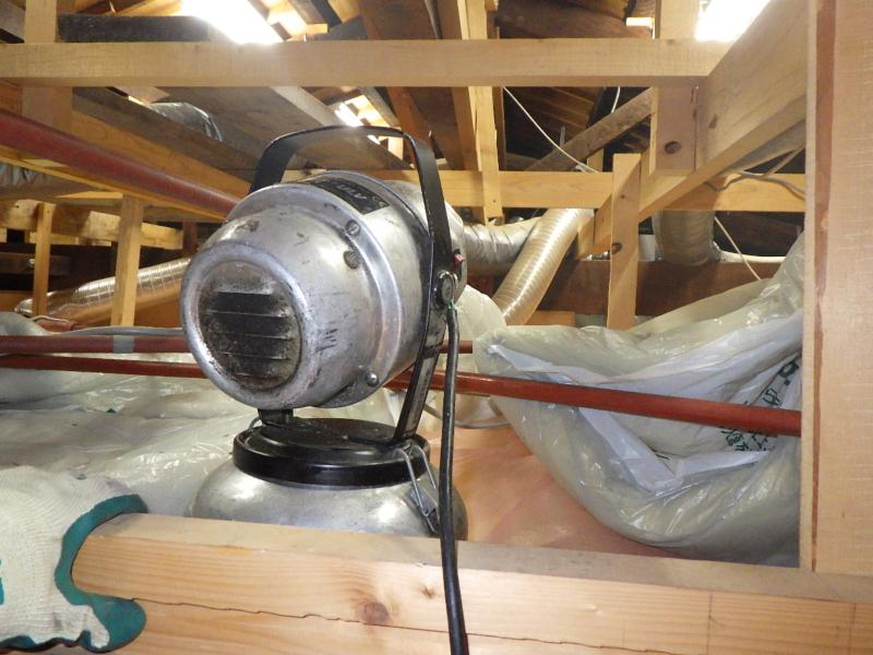 伝統的木造家屋のネズミ防除作業|京都市北区スライダー5