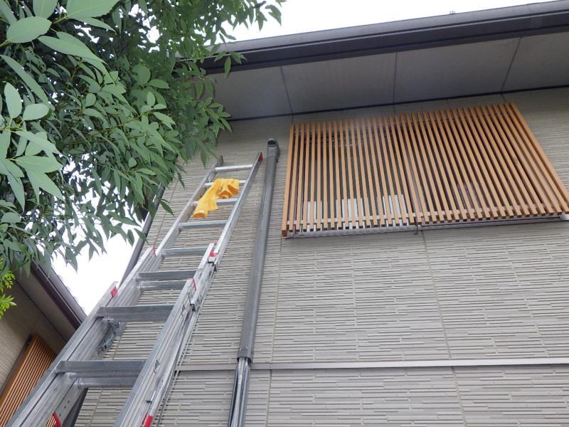 ムクドリ営巣撤去作業/京都市左京区 イメージ