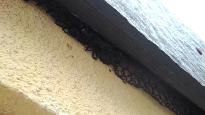 戸建住宅のコウモリ対策 亀岡市スライダー2